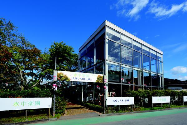 Toki no Sumika Museum Suichu Rakuen Aquarium image
