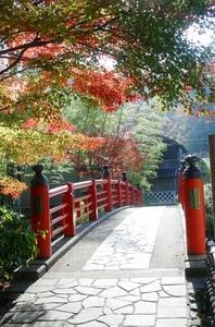 楓橋 image
