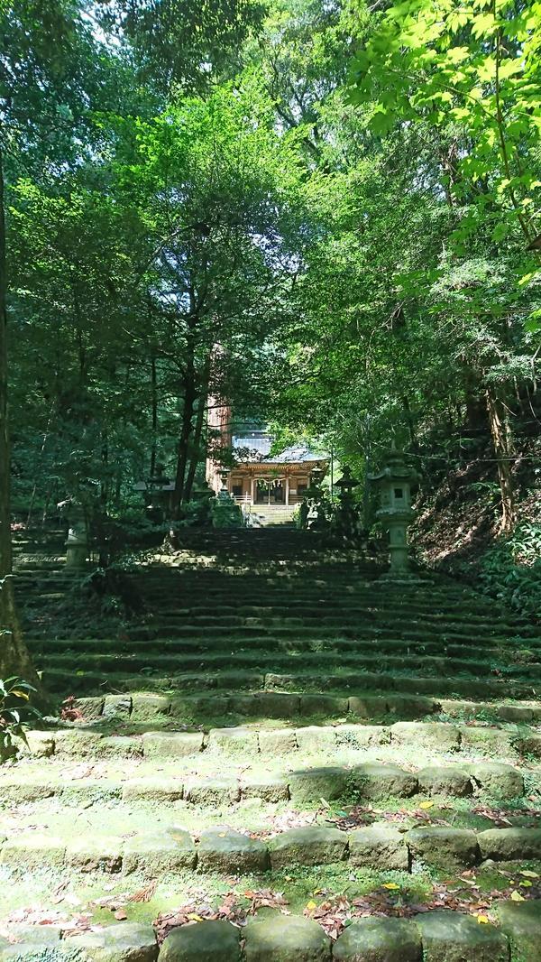 八幡宮来宮神社 image