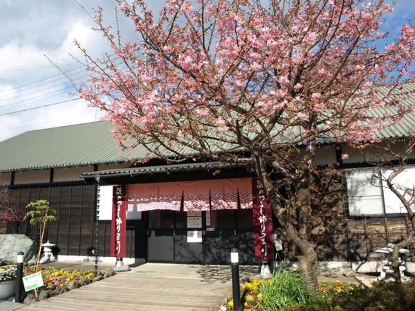 文化公園雛の館 image