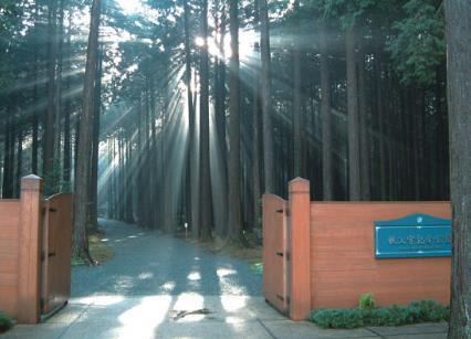 치치부노미야 기념 공원 image