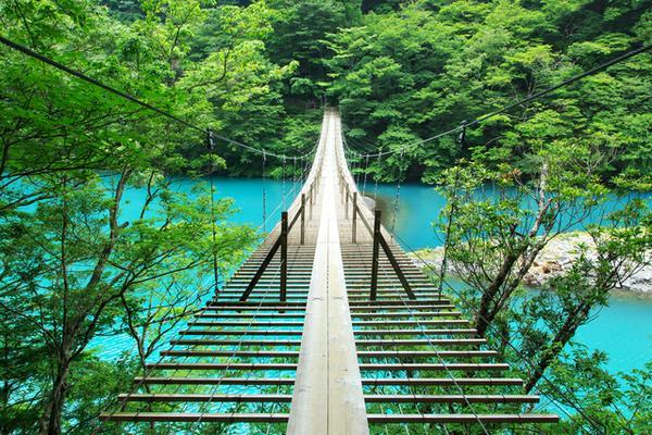 夢のつり橋 image