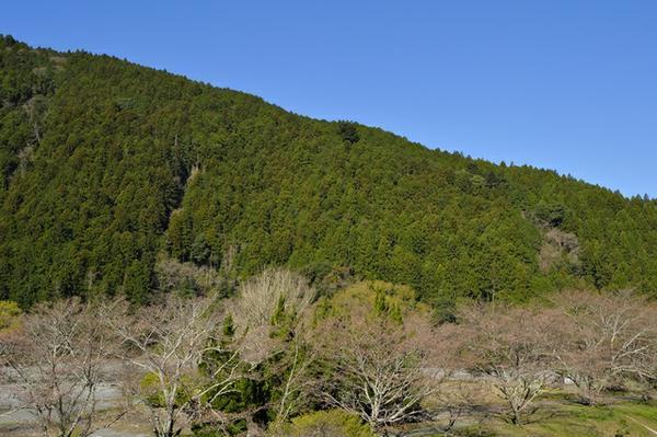 ภูเขาอาคิฮะ image