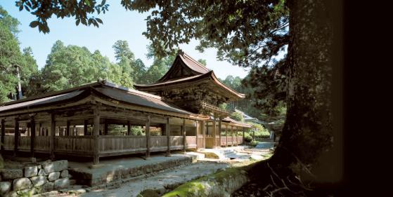Aburahi-jinja Shrine image