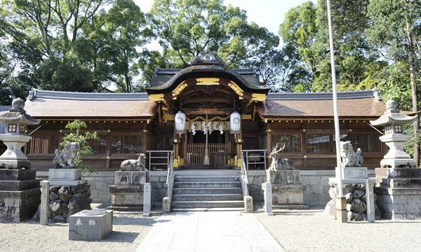 立木神社 image