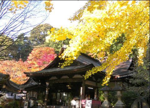 岩間山正法寺(岩間寺) image