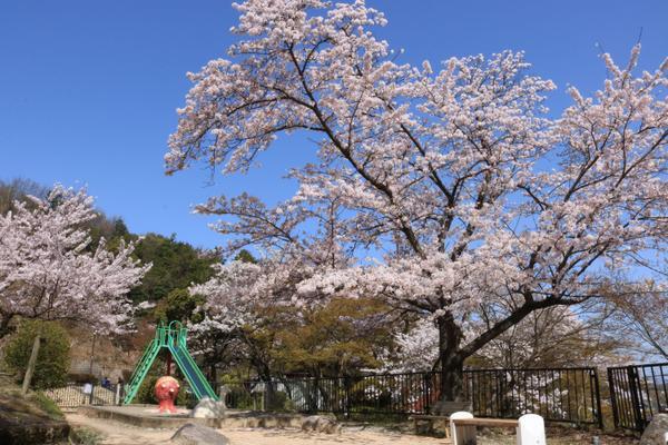 延命公園 image
