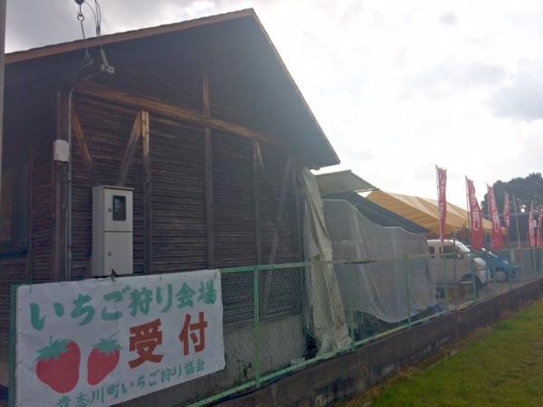 貴志川観光いちご狩り協会 image