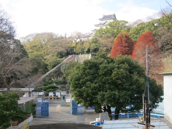 和歌山城公園動物園 image