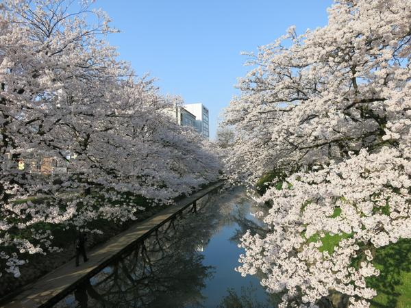 松川公園 image