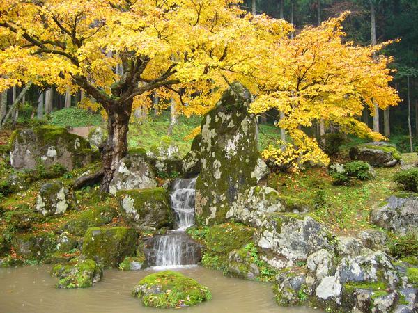 諏訪館跡庭園 image