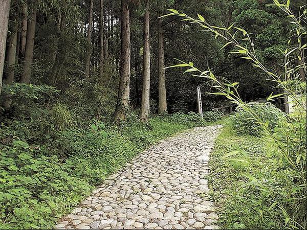 鹿ヶ瀬峠石畳道 image