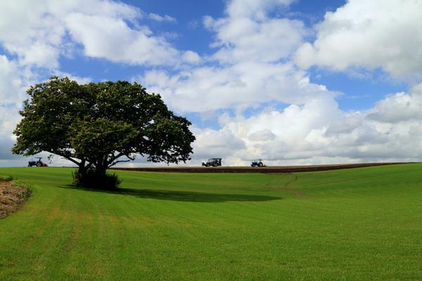パレットの丘 image