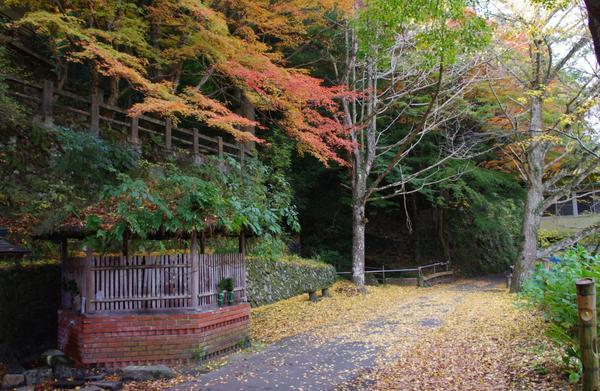 塩江温泉郷の紅葉 image