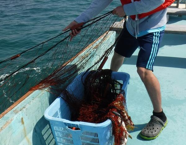 上ノ加江漁業体験施設 わかしや image