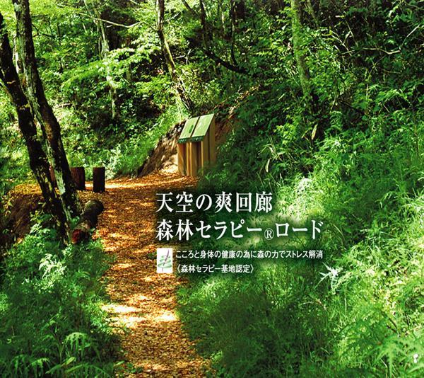四国カルスト天狗高原 森林セラピーロード image