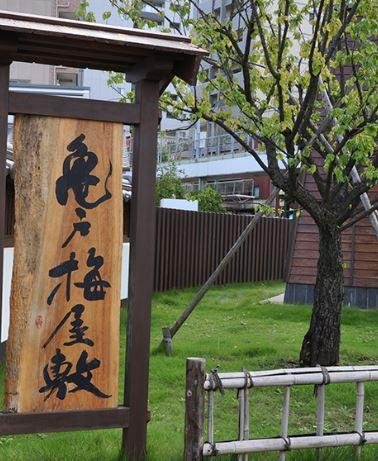 亀戸梅屋敷 image