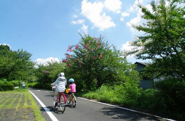 国営武蔵丘陵森林公園 サイクリングコース image
