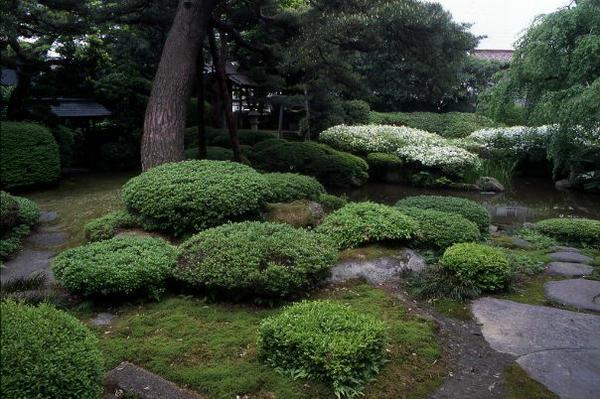 菅家庭園 image