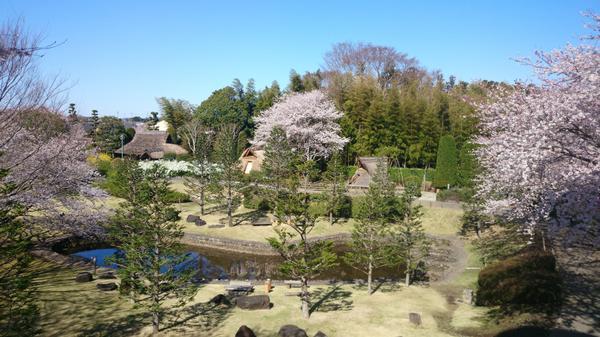 水戸市大串貝塚ふれあい公園(水戸市埋蔵文化財センター) image