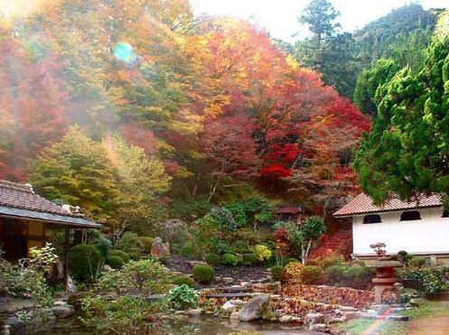 永明寺 image