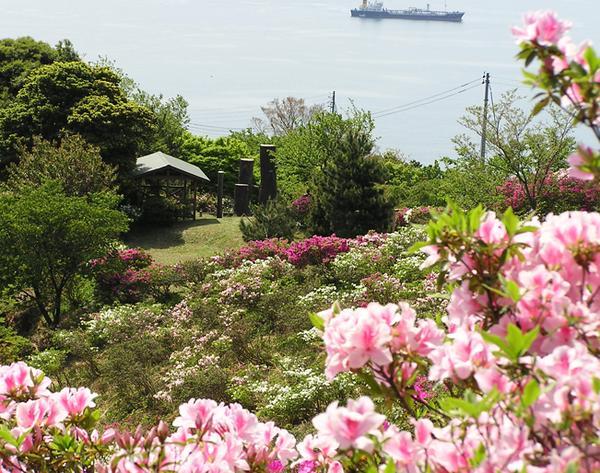 五本松公園 image