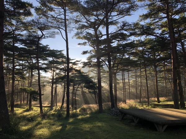 えびの高原キャンプ村 image