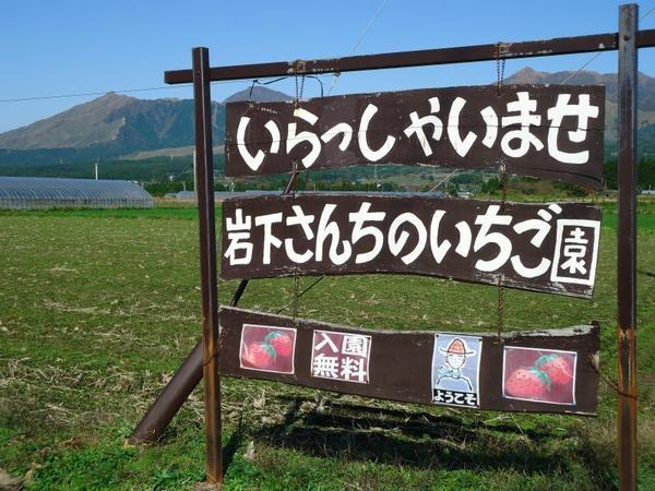 南阿蘇岩下さんちのいちご園 image