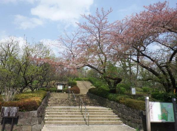羽根木公園 image
