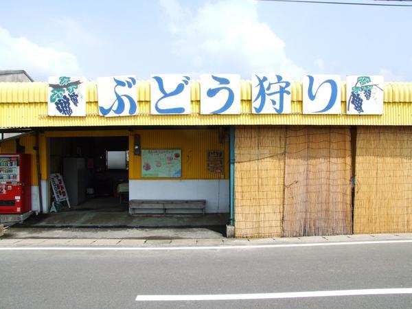 横田上観光ぶどう園 image