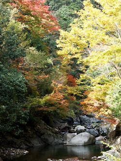 木谷峡 image