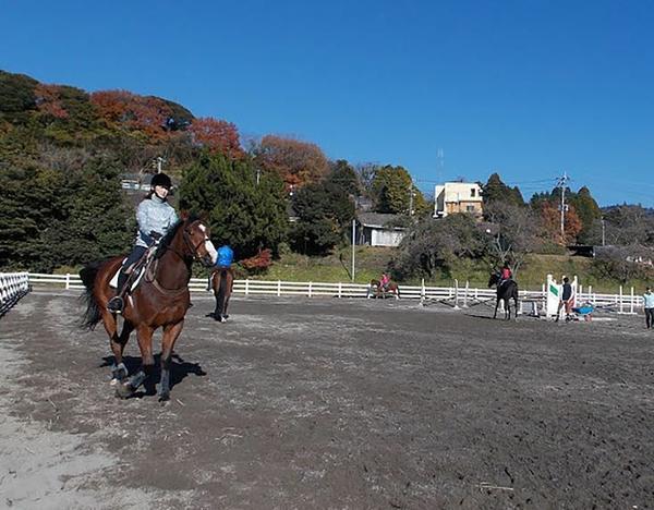 Kirishima Kogen Horse Riding Club image