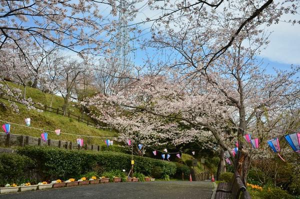 塚山公園 image