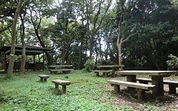 はやま三ヶ岡山緑地 image