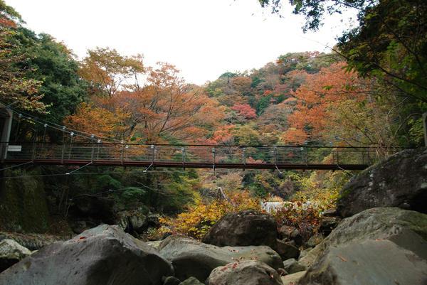 堂ケ島渓谷遊歩道 image