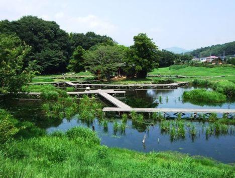 嚴島濕生公園 image
