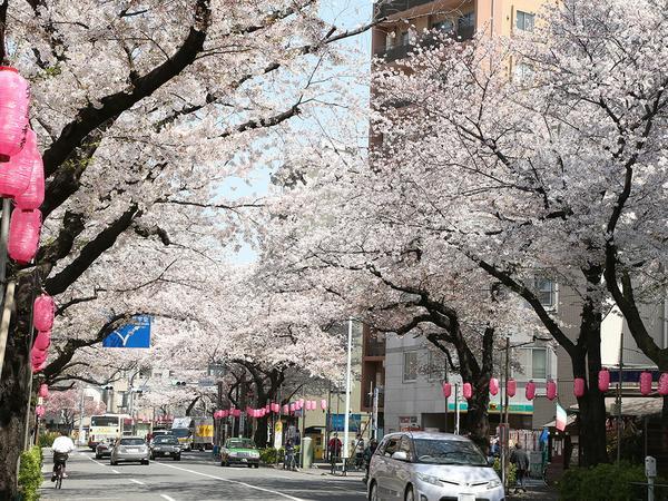 나카노 거리 image