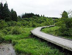 小田貫湿原 image
