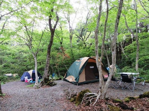 丸火自然公園・丸火自然公園グリーンキャンプ場 image