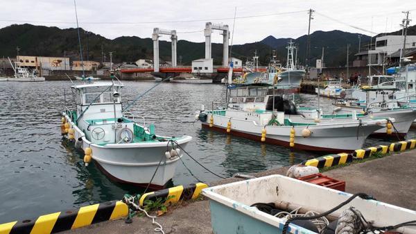 江ノ浦橋 image