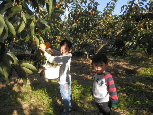 泉谷観光農園 image