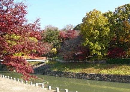 竜田川 image