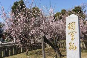 宮ノ陣神社 image