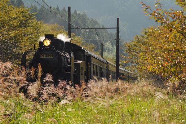 大井川鐵道SL(蒸気機関車) image