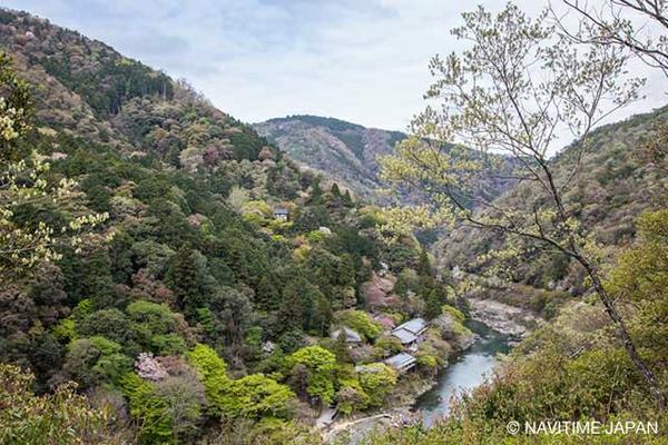 亀山公園 image