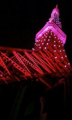 Tokyo Tower image9
