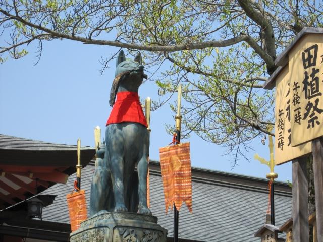 Fushimi Inari Taisha image5
