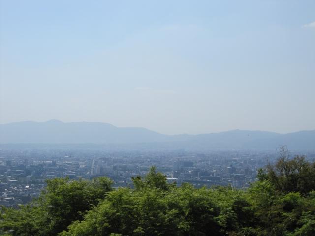 Fushimi Inari Taisha image6