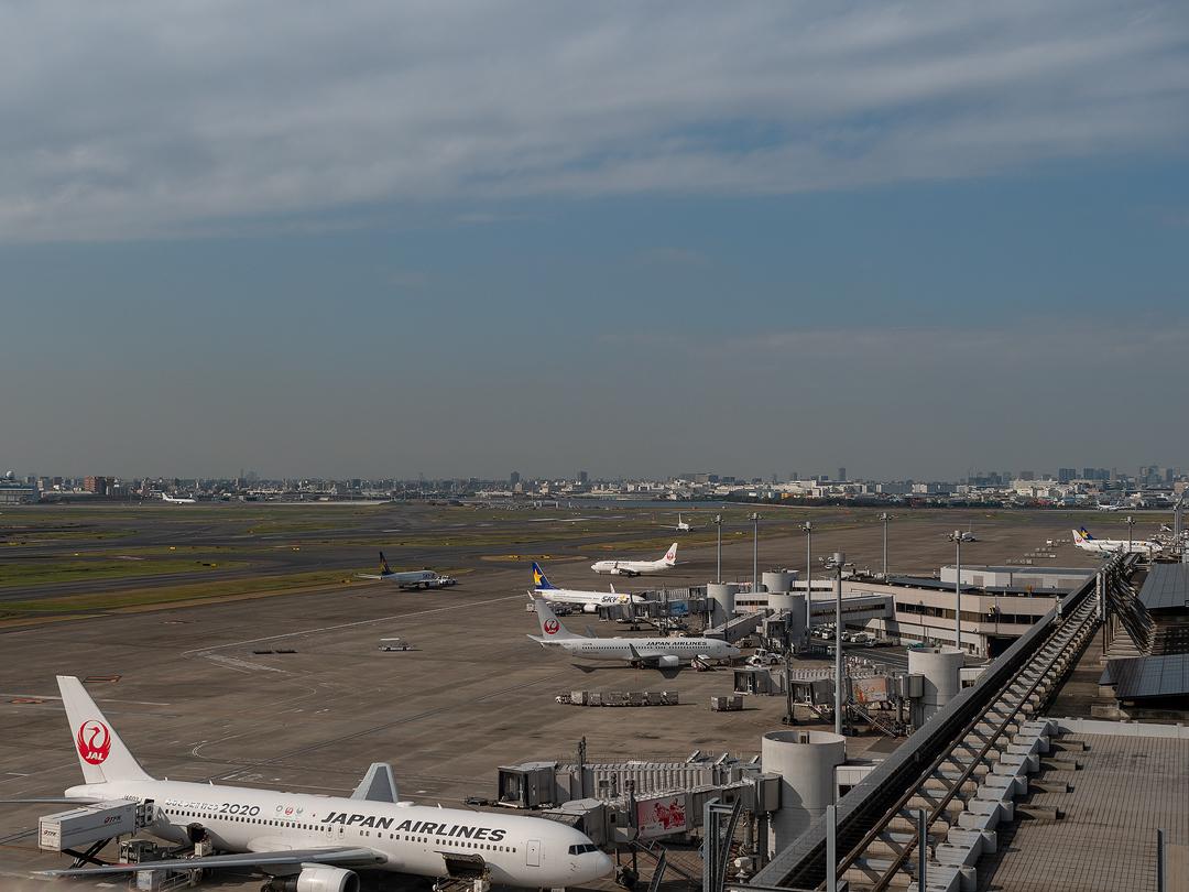 Haneda Airport Domestic Passenger Terminal (Big Bird) image8